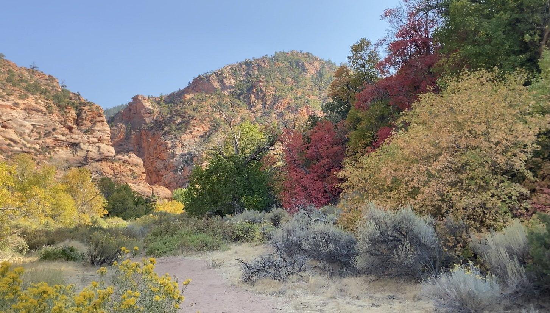 Spring Creek Canyon