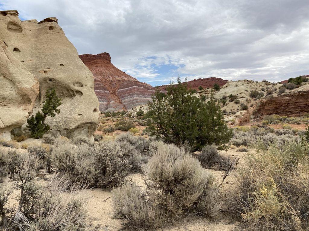 Empty Desert Hiking scaled